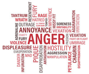 Anger Management Program