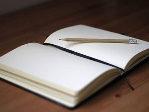 Mindful Journaling Workshop